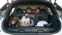 Köpekli ailelere özel: Nissan X-Trail 4Dogs